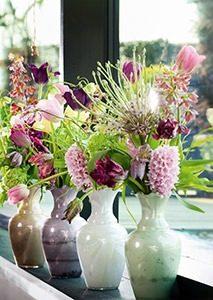 snijhyacint 004 WEBmg 213x300 - Lieflijke bloemen: de hyacint