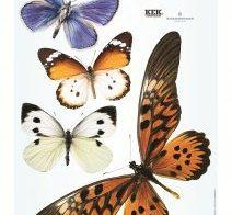 Levensechte vlinders