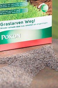 Pokon Graslarven Weg 010 WEBmg 200x300 - Kruidig gazon
