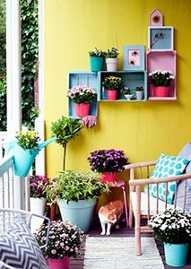 kleurrijke herfsttuin 02 WEB marcelineke 213x300 - Kleurrijke herfsttuin