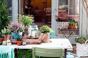 nieuwewildernis 01 WEB marcelineke 300x200 - 'Nieuwe wildernis'-tuin