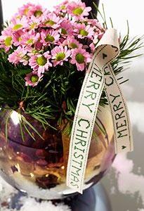Chrysant dennentakjes WEB marcelineke 205x300 - Tien variaties met chrysant