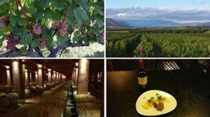 restaurant Karakter Marcelineke 300x168 - Griekse wijnen in de hoofdrol bij Karakter