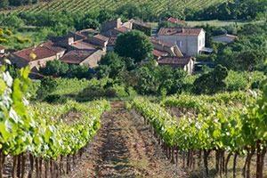 het dorp marcelineke 300x200 - Culinaire wijnreis Languedoc