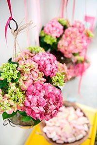 kamerhortensia 03 WEB marcelineke 200x300 - Een kamerhortensia fleurt je huis op!