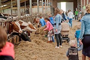 Campina Open Boerderijdagen 2 marcelineke 300x200 - Beleef het boerenleven