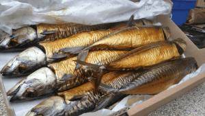 gerookte makreel klein 300x169 - Wat weet jij eigenlijk van makreel?